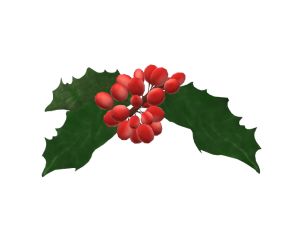 Cartoon holly leaves and berries
